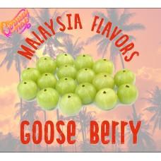 Крыжовник / Goose Berry