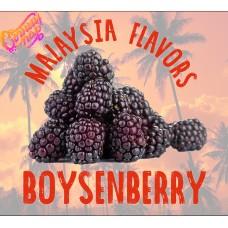 Бойзенова ягода / Boysenberry